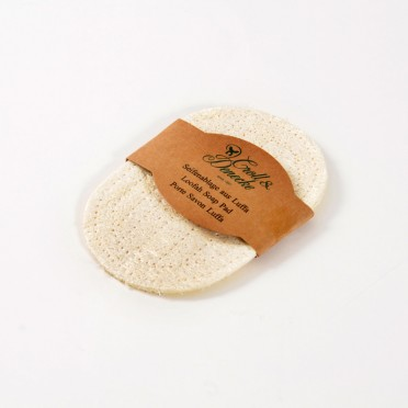 Loofah Soap Dish (Sponge and Scourer), top view